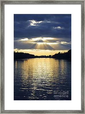 Sunrays On Toronto Island Framed Print by Elena Elisseeva