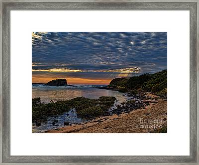 Framed Print featuring the photograph Sunrays by Trena Mara
