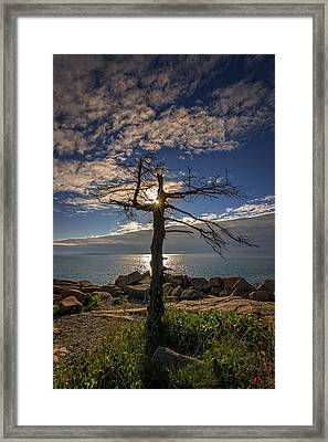 Sunrise Acadia Framed Print