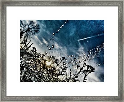 Sunrise After Rain Framed Print by Marianna Mills
