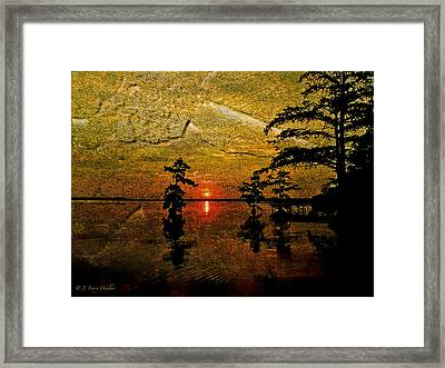 Sunrise And Cypress Abstract Framed Print