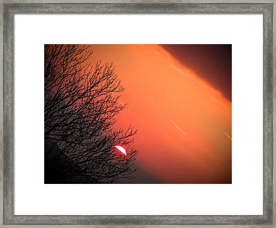 Sunrise And Hibernating Tree Framed Print