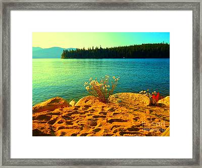 Sunrise At Daisy Lake Framed Print by Ann Johndro-Collins