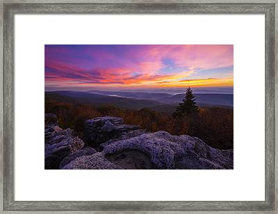 Sunrise At Dolly Sods In West Virginia Framed Print