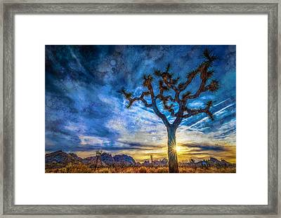 Sunrise At Joshua Tree Stylized Framed Print by Michael Filippoff