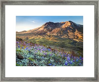 Sunrise At Mount St. Helens Framed Print