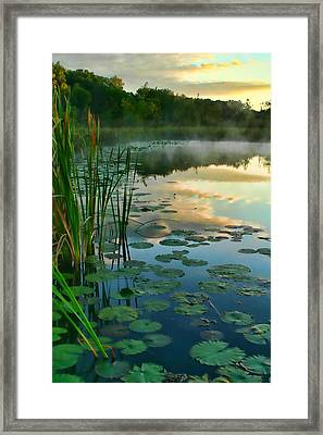 Sunrise At Pokagon State Park  Framed Print