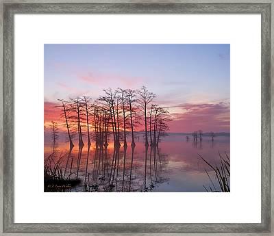 Sunrise At Reelfoot Lake Framed Print by J Larry Walker