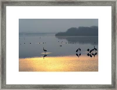 Sunrise Over The Hula Valley Israel 1 Framed Print