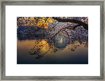 Sunrise At The Thomas Jefferson Memorial Framed Print by Susan Candelario