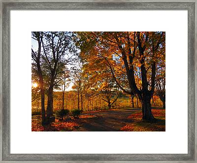 Sunrise Autumn Framed Print