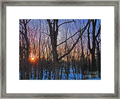 Sunrise Behind The Trees Framed Print