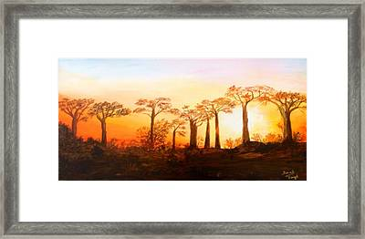 Sunrise Boab Trees Framed Print