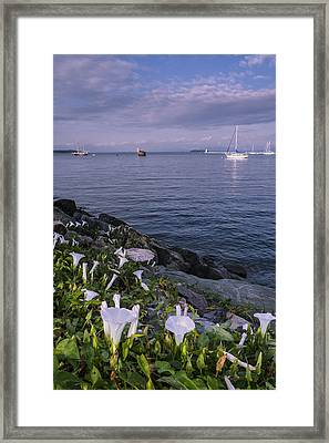 Sunrise-clouds-lake Champlain-vermont Framed Print by Andy Gimino