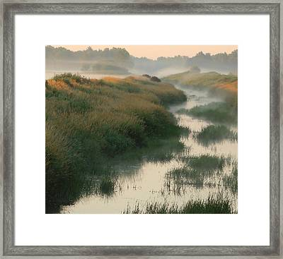Sunrise Creek Framed Print