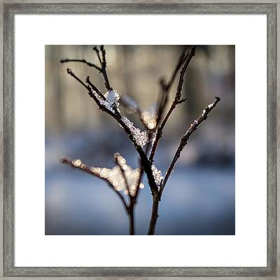 Framed Print featuring the photograph Sunrise Crystals by Glenn DiPaola