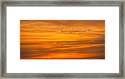 Sunrise Flight Framed Print
