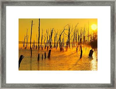 Sunrise Fog Shadows Framed Print