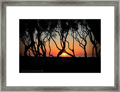 Sunrise Fort Fisher Framed Print