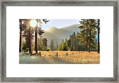 Sunrise Gold Framed Print