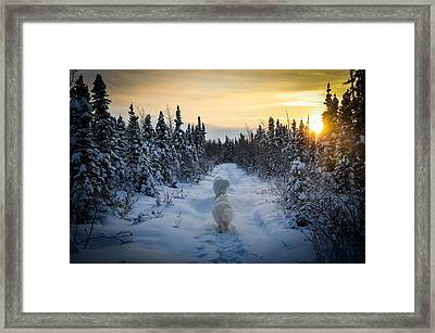 Sunrise Hike Framed Print