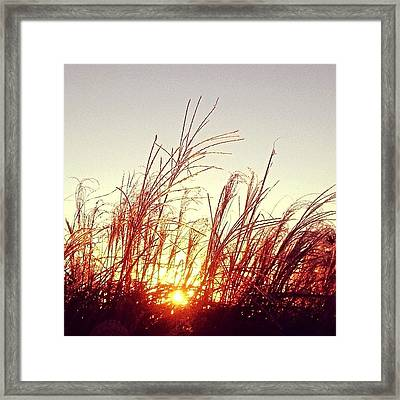Sunrise #igersoflouisiana #iphone5 Framed Print