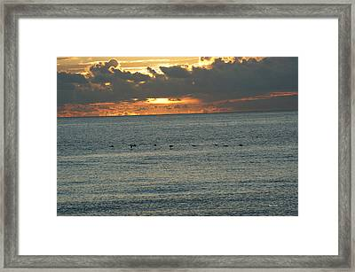 Framed Print featuring the photograph Sunrise In Florida Riviera by Rafael Salazar