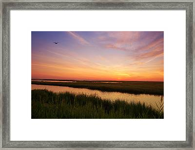 Sunrise In Jersey 4 Framed Print by Rima Biswas