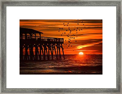 Sunrise In Myrtle Beach With Birds Flying Around The Pier Framed Print