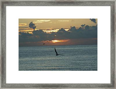 Framed Print featuring the photograph Sunrise In The Florida Riviera by Rafael Salazar