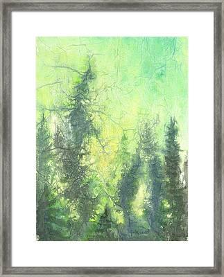 Sunrise In The Forest Framed Print