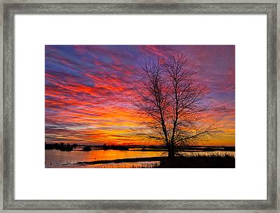 Sunrise In The Sacramento Valley Framed Print