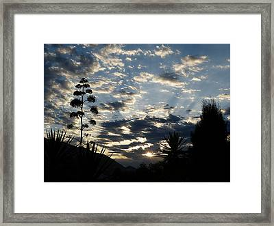 Framed Print featuring the photograph Sunrise by Janina  Suuronen