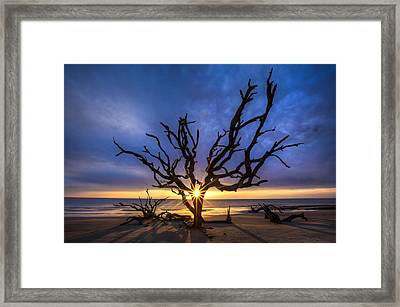 Sunrise Jewel Framed Print by Debra and Dave Vanderlaan