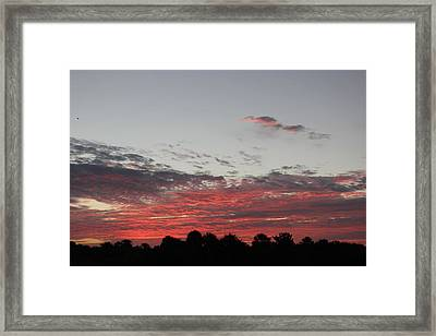 Framed Print featuring the photograph Sunrise by John Mathews