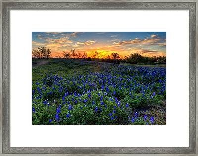 Sunrise Framed Print by Mark Alder