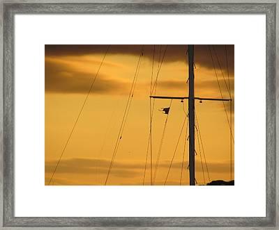 Sunrise Mast Cables Framed Print