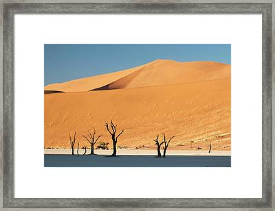 Sunrise On Dead Trees And Dunes At Dead Framed Print by Jaynes Gallery