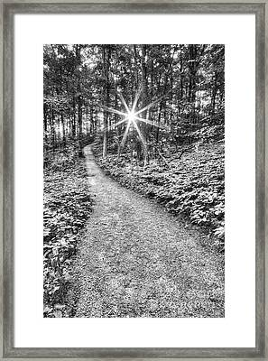 Sunrise On Empire Bluff Trail  Framed Print by Twenty Two North Photography