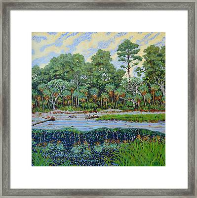 Framed Print featuring the painting Sunrise On Hunting Island Lagoon by Dwain Ray
