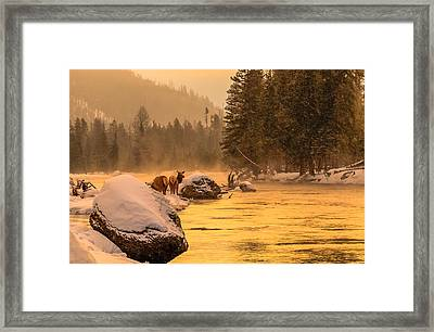 Framed Print featuring the photograph Sunrise On Madison River by Yeates Photography