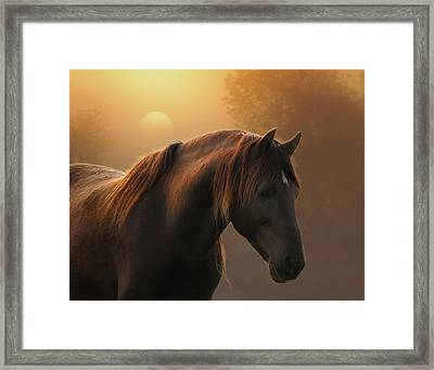 Sunrise On Planet Earth Framed Print by Ron  McGinnis