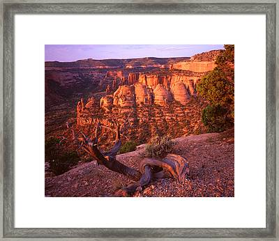 Sunrise On The Coke Ovens Framed Print
