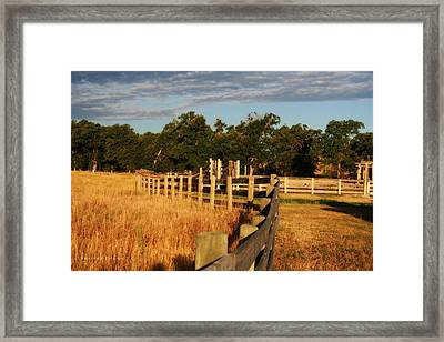 Sunrise On The Fence Framed Print