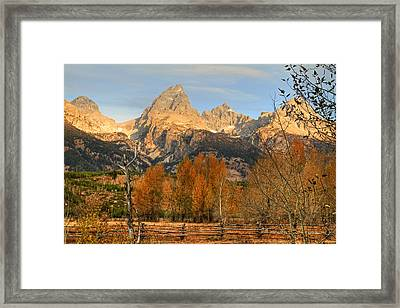 Sunrise On The Grand Tetons Framed Print by Donna Kennedy