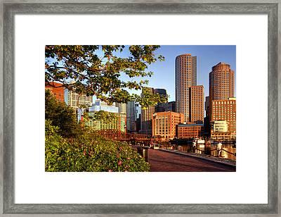 Sunrise On The Harbor - Boston Skyline Framed Print