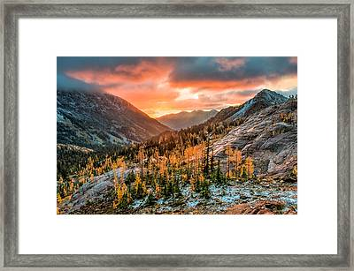 Framed Print featuring the photograph Sunrise On The Larches by Brian Bonham