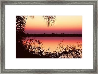 Sunrise On The Okavango Delta Framed Print