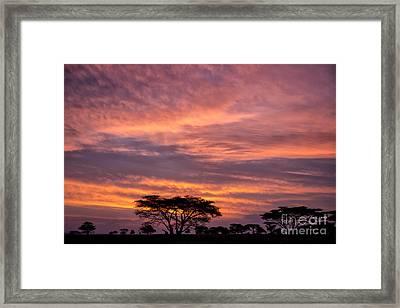 Sunrise On The Serengeti Framed Print