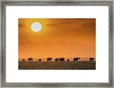 Sunrise Over Amboseli Framed Print